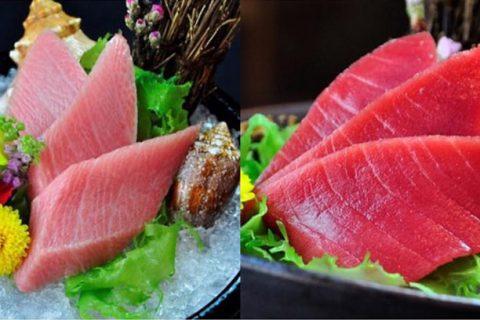 """""""Sushi Shin""""ร้านซูชิอร่อยล้ำระดับพรีเมี่ยม ไม่ลองไม่ได้แล้ว"""