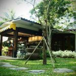 หลงป่า (Lhong-Pa) (10)