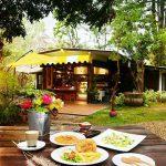 หลงป่า (Lhong-Pa) (2)