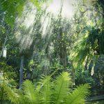 หลงป่า (Lhong-Pa) (6)
