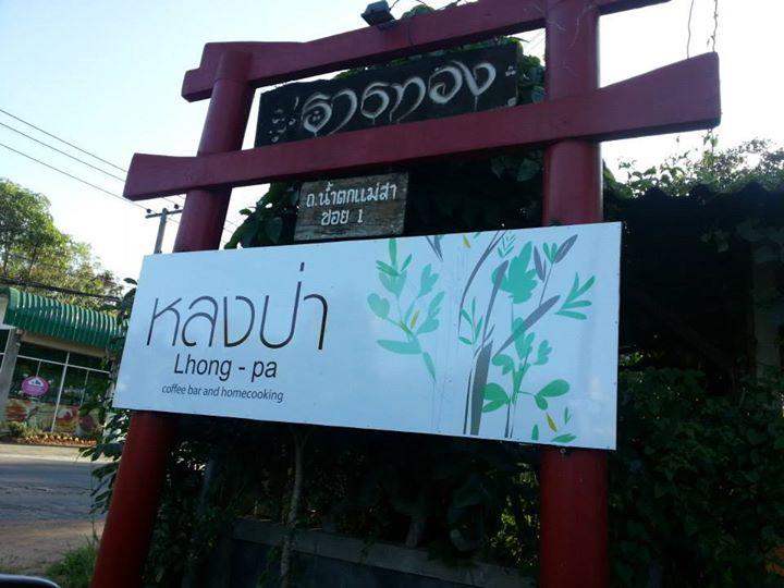 หลงป่า (Lhong-Pa) (7)