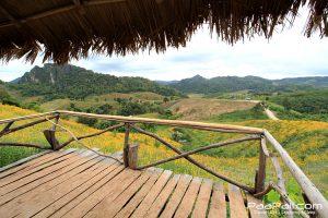 ภูป่าเปาะ  ฟูจิเมืองไทย อ.หนองหิน เมืองเลย (14)