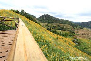 ภูป่าเปาะ  ฟูจิเมืองไทย อ.หนองหิน เมืองเลย (15)
