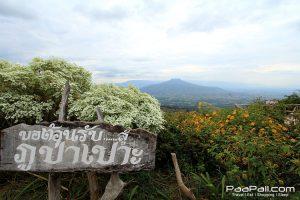 ภูป่าเปาะ  ฟูจิเมืองไทย อ.หนองหิน เมืองเลย (19)