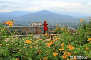 ภูป่าเปาะ  ฟูจิเมืองไทย อ.หนองหิน เมืองเลย (6)