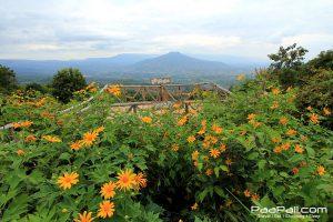 ภูป่าเปาะ  ฟูจิเมืองไทย อ.หนองหิน เมืองเลย (7)