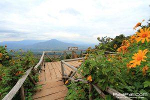 ภูป่าเปาะ  ฟูจิเมืองไทย อ.หนองหิน เมืองเลย (9)