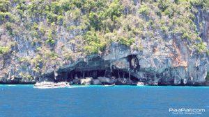 สวรรค์บนท้องน้ำ เกาะพีพี-อ่าวต้นไทรและอ่าวโละดาลัม