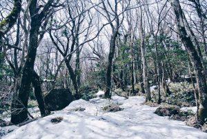 โดดงานวันเดียว เที่ยวเกาะเชจู เกาหลีใต้ 4 วัน 12,000 บาท