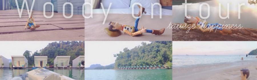 hi-Woody