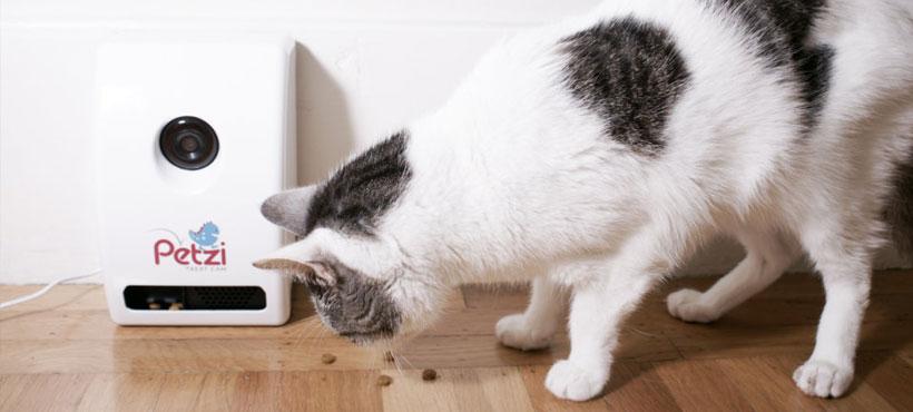 Petzi Treat Gadget เครื่องป้อนอาหารสัตว์เลี้ยงสุด Hitech