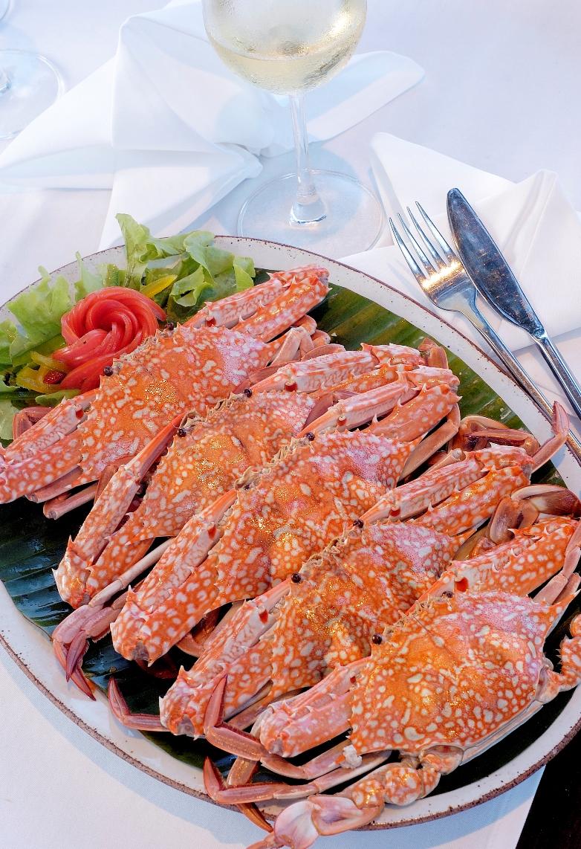 Food_15-01-2008_005