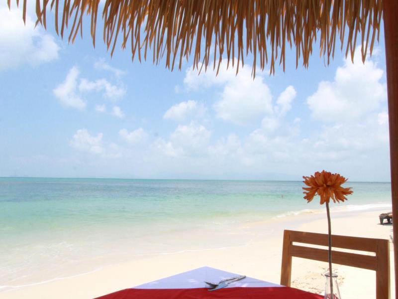 Mimosa Resort  (1)