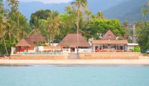 Mimosa Resort  (5)