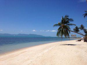 Mimosa Resort  (6)