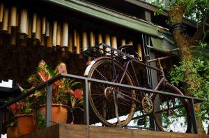 บางกระเจ้า 8 บาท จากกลางกรุง ไปปั่นจักรยานกลางป่าและชายฝั่งทะเลได้