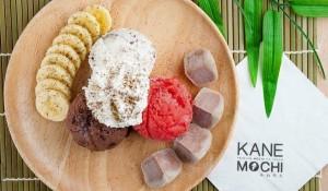 Kanemochi Cafe (4)