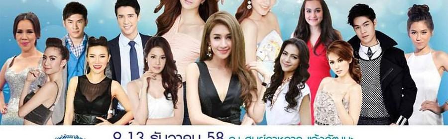 The Winter Festival Bangkok 2015 (2)