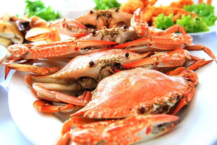 rtpseafood4