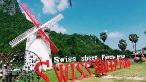 Swiss Sheep Farm (1)