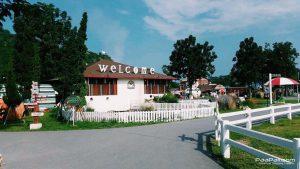 Swiss Sheep Farm (18)