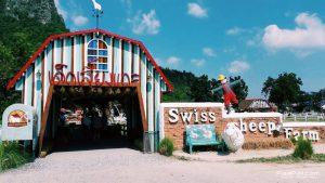 Swiss Sheep Farm (4)
