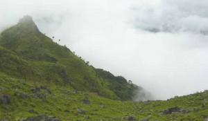 อุทยานแห่งชาติดอยภูคา   (2)