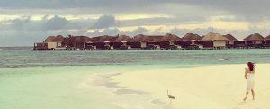 """ตามรอย """"กิ๊บซี่ Girly Berry"""" ไปเที่ยว W Retreat & Spa - Maldives"""