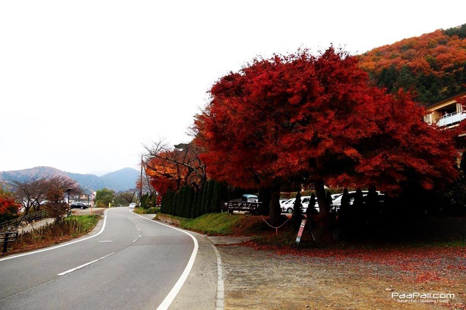 japanfinal_123