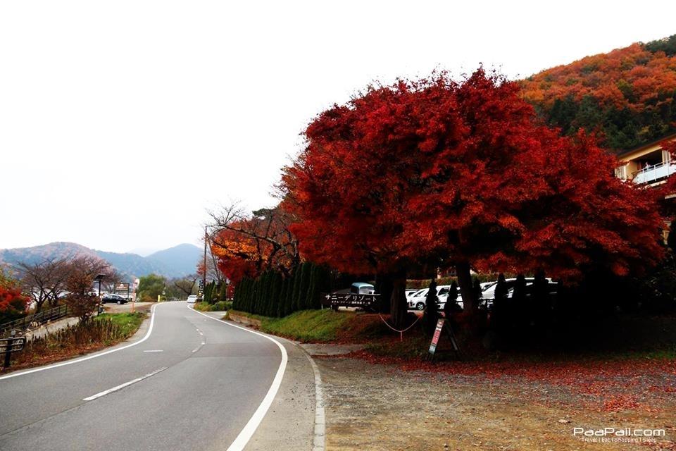 japanfinal_333