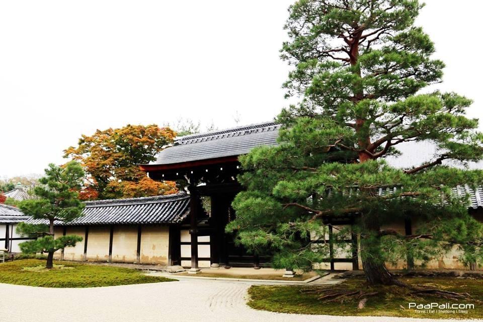 japanfinal_3553