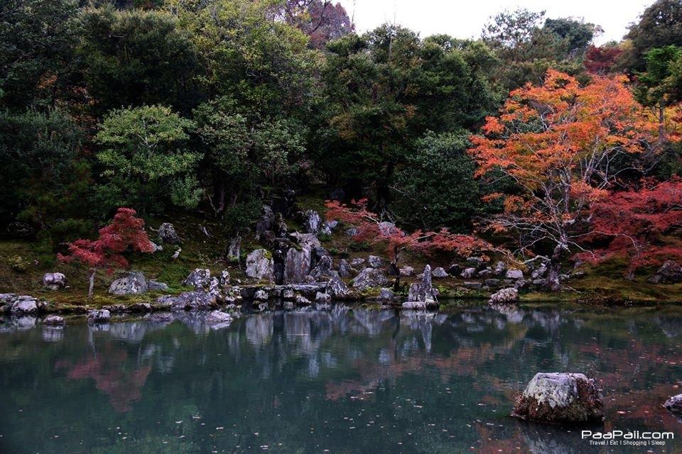 japanfinal_4032