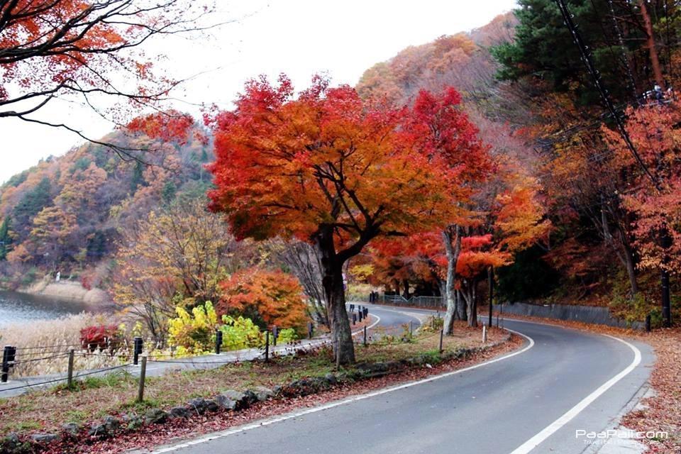 japanfinal_4495