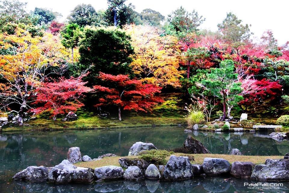 japanfinal_7985