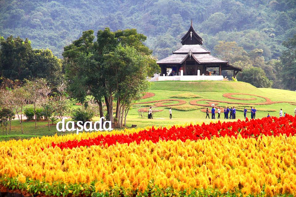dasada gallery