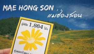 maehongson