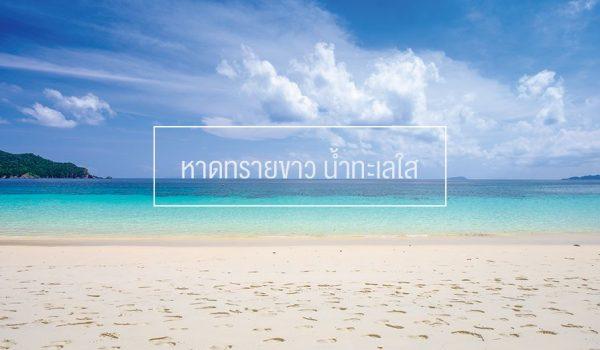 sea (12)