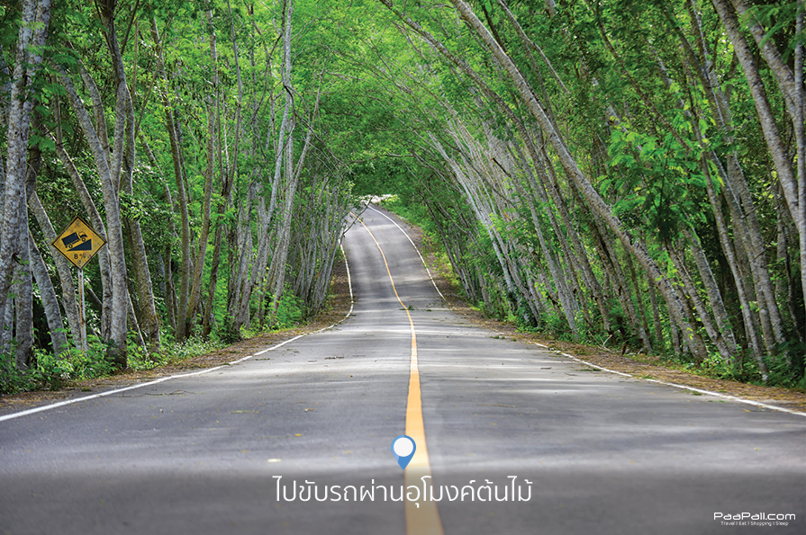 Kaeng Krachan National Park (4)