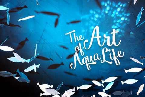 """พาไปเดินเล่นให้เย็นใจที่งาน """"The Art of Aqua Life"""" @เซ็นทรัลพลาซา บางนา"""