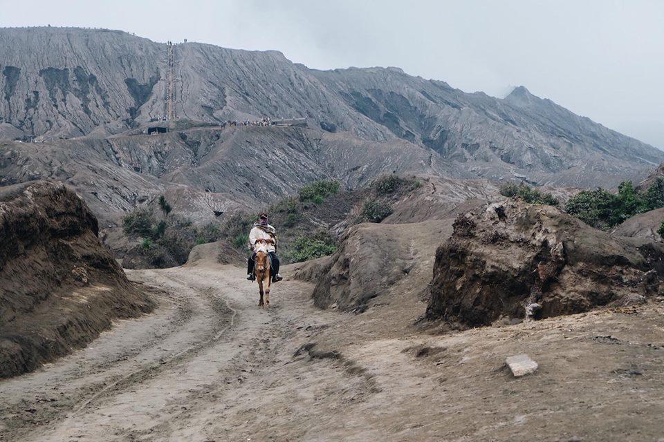 Mount Bromo (10)