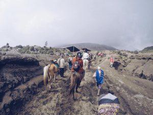 Mount Bromo (61)