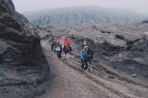 Mount Bromo (78)