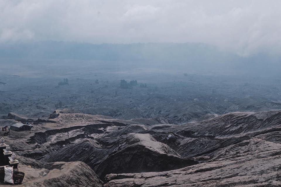 Mount Bromo (88)