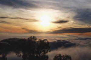 Mount Bromo (91)