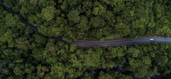 Khao Yai National Park (1)