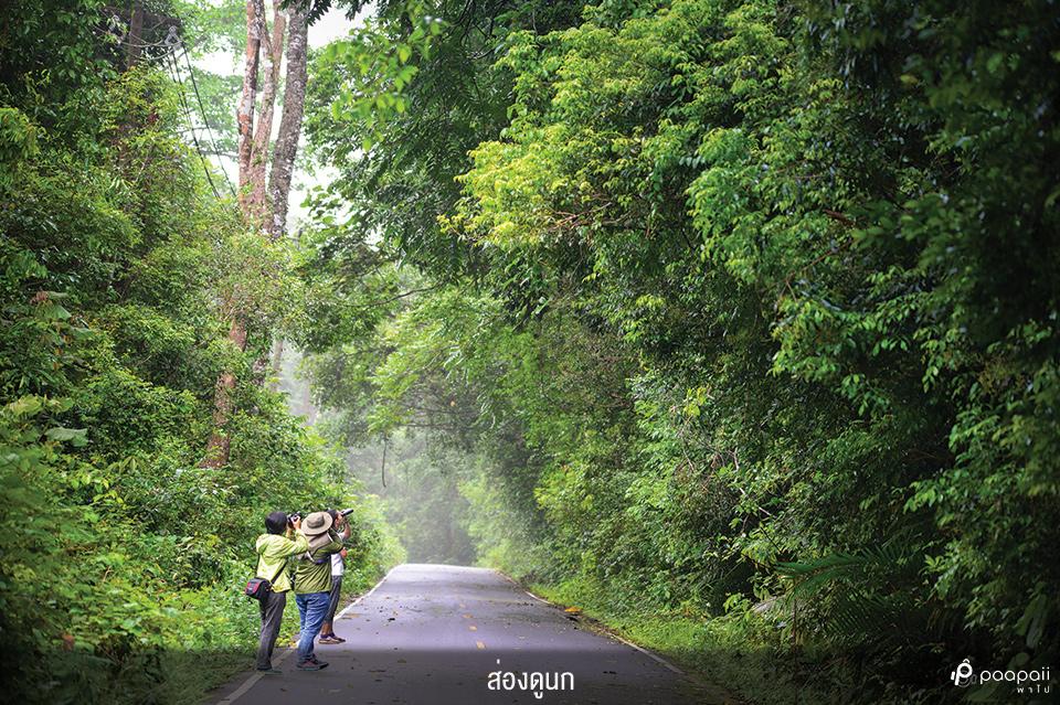 Khao Yai National Park (12)