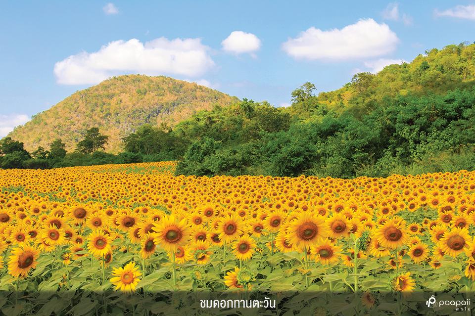 Khao Yai National Park (2)