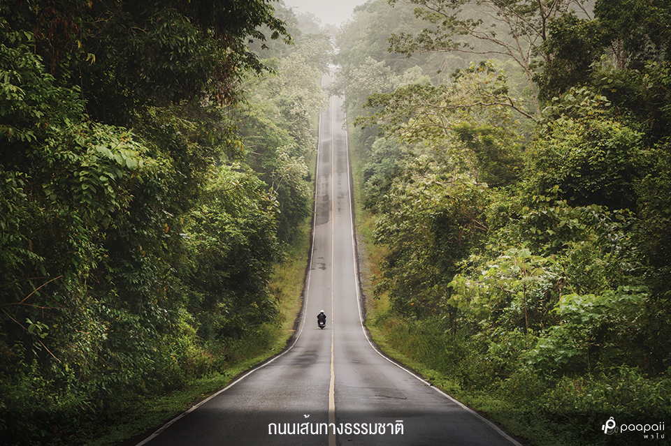 Khao Yai National Park (5)