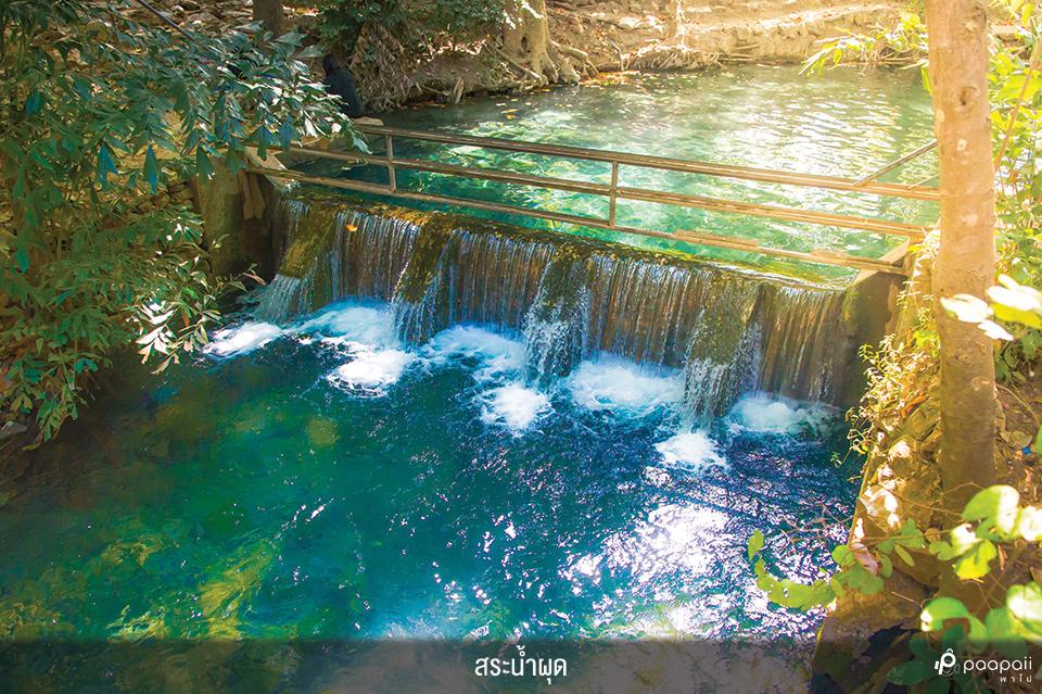 Khao Yai National Park (6)
