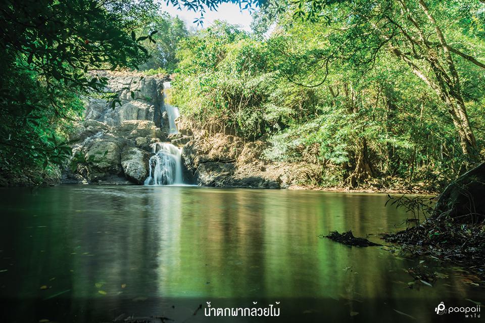 Khao Yai National Park (8)